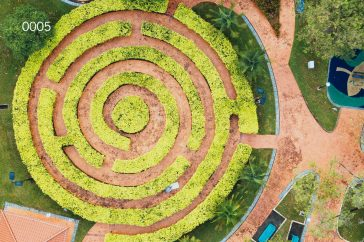 Design the park of the future